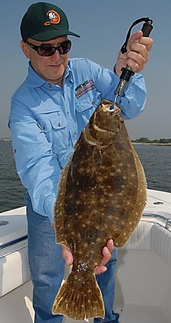 Fluke (Summer Flounder)