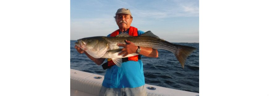 Angler Brian Albano practices catch and release when fishing with Capt. Joe Pagano. Shown with a 30-pound striped bass caught, tagged and released at Pt. Judith Light off Narragansett, RI.