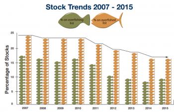 Status of the stocks chart