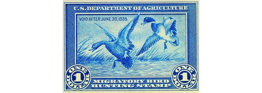 The first U.S. duck stamp