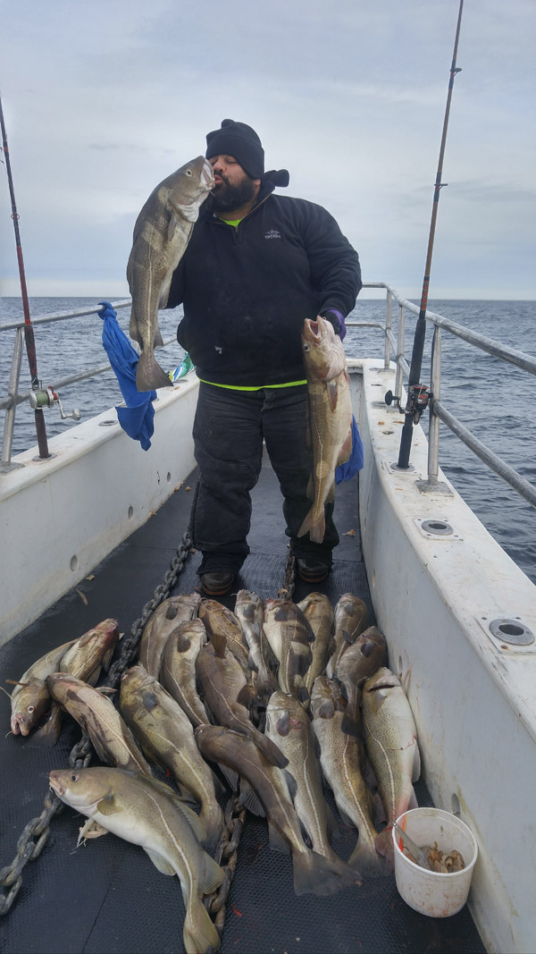 i kid you not cod fishing is hot marine fish