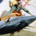 Learning the Language of Fisheries