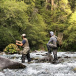 Restoring Healthy Habitat for California's Salmon