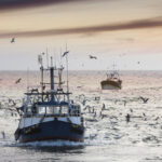Executive Order Could Impact Coastal Fisheries, Habitats: Part I