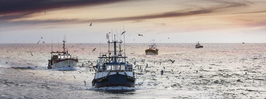 Commercial fishing boats - NOAA photo