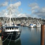 Recommendations for the Economic Recovery of Working Waterfronts, Coastal Communities, and the Seafood Supply Chain: Part One