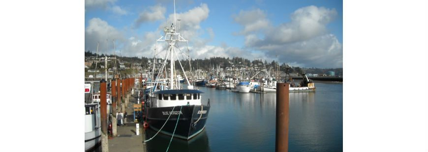 Harbor: Newport, Oregon