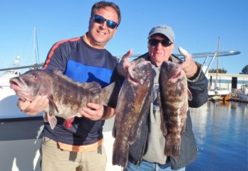 Steve Brustein of Rhode Island and Mike Weaver of New Hampshire with some of the tautog they caught off Newport in October.
