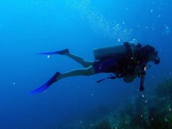 Scuba Diver [Photo Credit: Daquella Manera]
