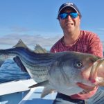 What to Expect with Striped Bass