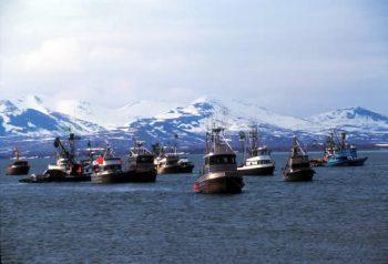 Fishing Boats in Bristol Bay