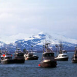 The Call to Protect Bristol Bay