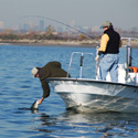 Recreational anglers