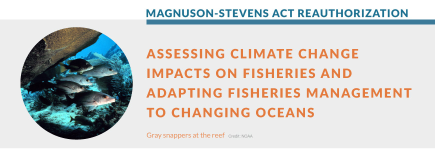 Assessing Climate Change Impacts on Fisheries & Adapting Fisheries Management to Changing Oceans