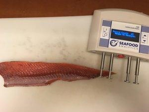 "Seafood Analytics' CQR device quantifies how ""fresh"" a fish is."