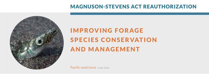 Improving Forage Species Conservation and Management