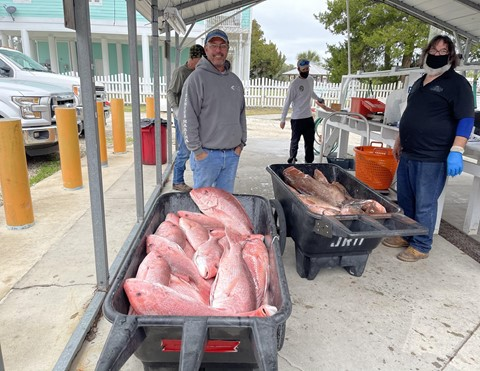 Red snapper and red grouper are offloaded with Tide's Up Fisheries.  Pictured are Captain Paul Reeves (left), FWC Marine Biologist Matt Doster (middle), and Lombardi's Seafood processor, Larry Jones (right).