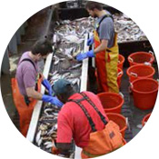 Supporting & Strengthening Science-Based Catch Accounting & Data Management