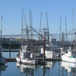 Resources to Support Local Fishermen & Seafood Businesses