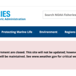 Government Shutdown Hurts Fish, Fishermen