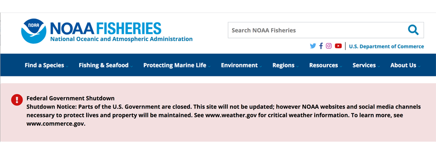 Government shutdown hurts fish, fishermen