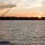 Florida's Fishing Future Depends on Science-Based Management