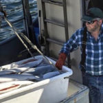 America's Small-Boat Fisheries: Making Sustainable Seafood More Traceable & Delicious