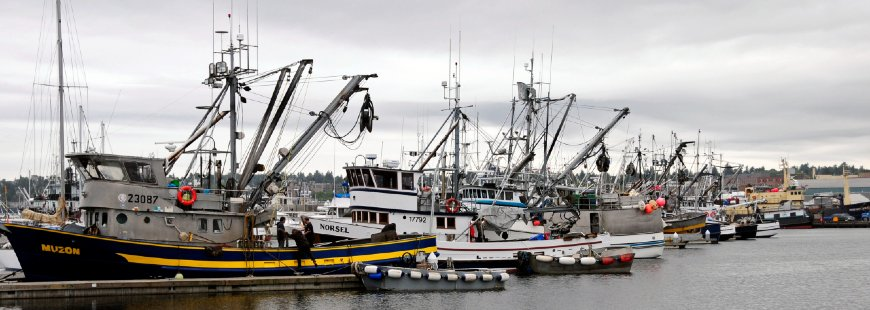 Fishing boats, photo via NOAA